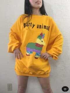 party animal applique sweatshirt dress front